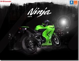 kawa ninja